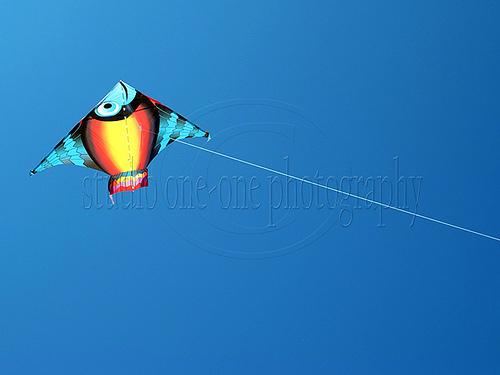 FishKite