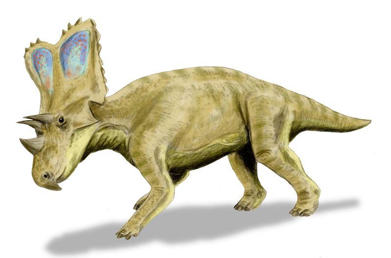Chasmosaurus_BW