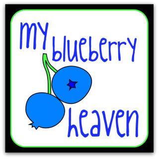 MyBlueberryHeaven