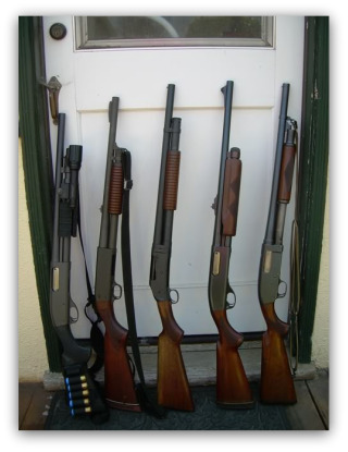Shotguns320