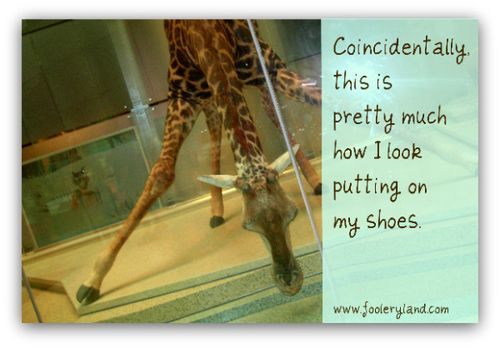 GiraffeShoes240_600