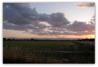 IrrigationSunset320