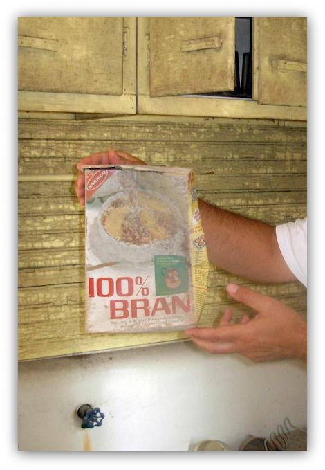 Bran047_470