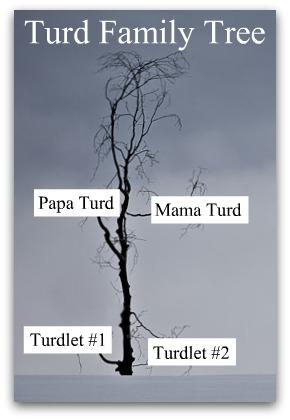 TurdFamilyTree