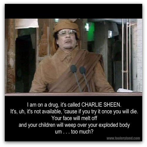 GaddafiMelt648