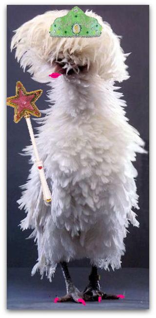 ChickenFairy