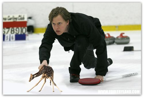LapGiraffeCurling