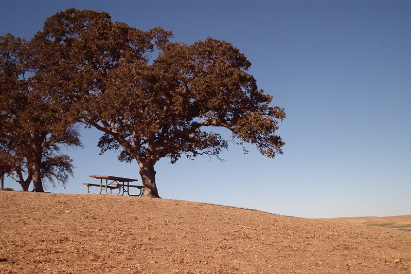 Lonely_picnic_table_2